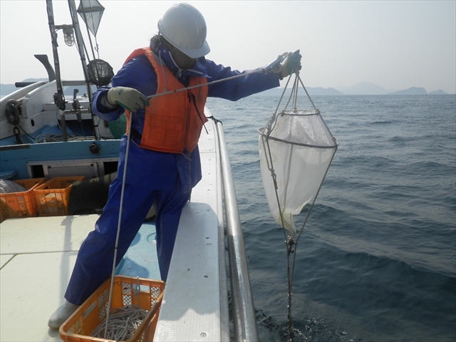 Zooplankton Sampling with Kitahara's quantiative net