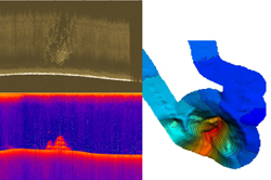 Scan sonar image and 3D rendering