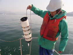 バンドーン採水器を用いた採水